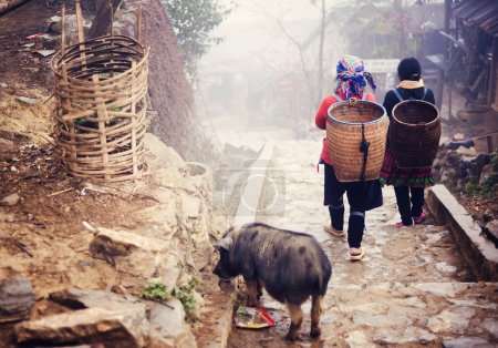 Hmong women on a way from their village