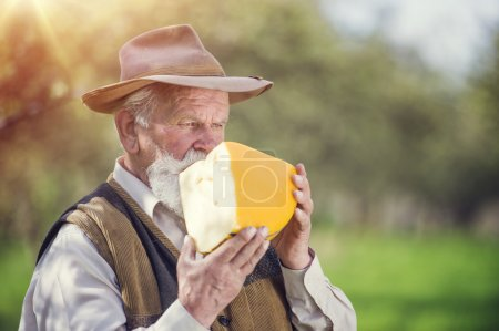 Photo for Senior farmer with organic cheese outside in green nature - Royalty Free Image