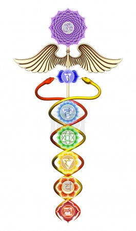 Caduceus Main Chakras