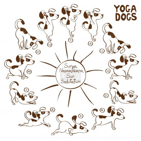 Dog doing yoga position of Surya Namaskara.