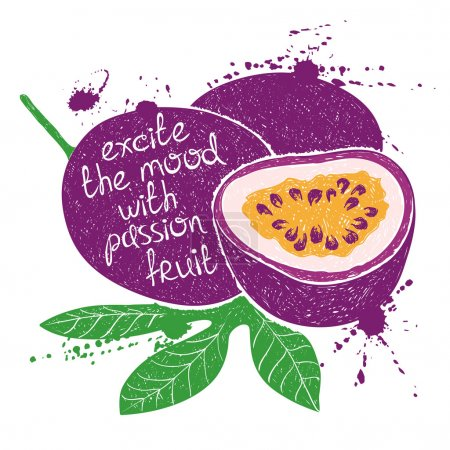 Illustration of isolated purple passion fruit silhouette.