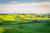 Rolling landscape in Tuscany