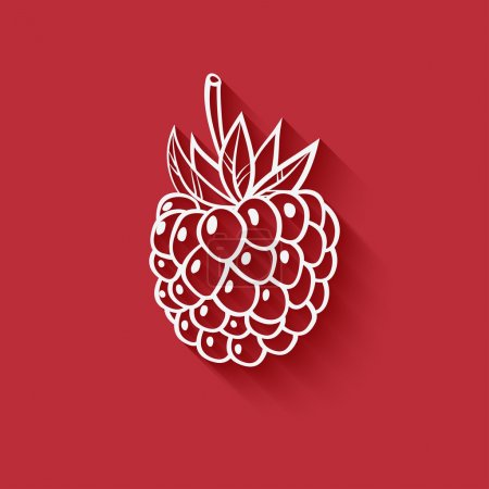 Raspberry on red background - vector illustration....