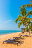 Krásné pláže a moře s palmami