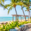 Beautiful tropical beach and sea with palm trees, ...