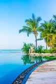 Luxusní bazén krajina