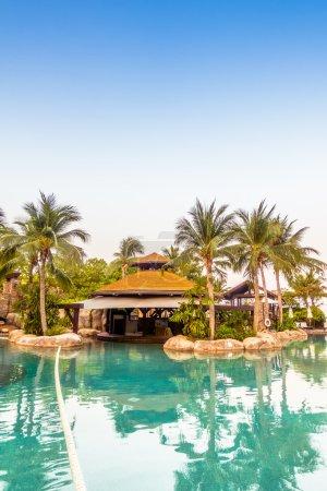luxury swimming pool landscape
