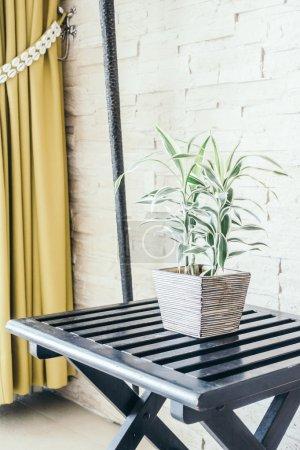 Vase plant tree