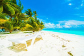 tropical beach and sea in maldives island