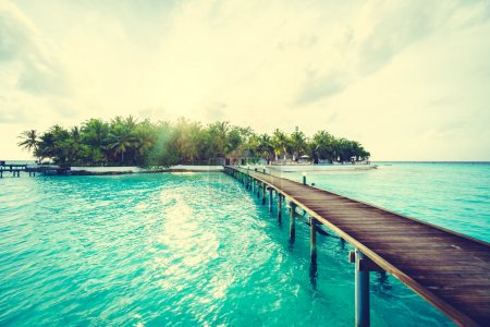 Beautiful tropical Maldives island