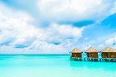 Beautiful Maldives island