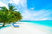 tropical beach in maldives island