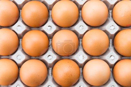 Photo pour Œufs de poule, isolés sur blanc - image libre de droit