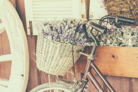Vintage bicycle with flowers
