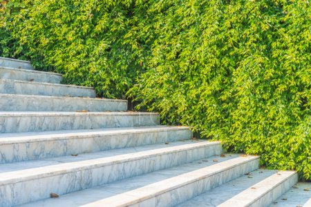 Marble staircase outdoor
