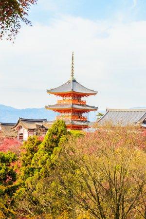 Kiyomizu-dera temple in autumn season