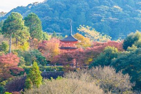 Kiyomizu dera temple in autumn season