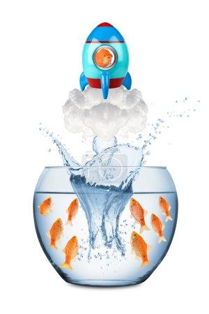 Photo pour Poisson quittant bol à poisson avec fusée - image libre de droit