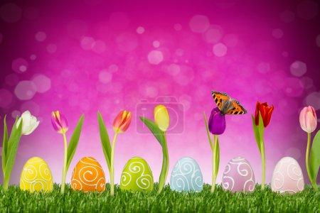 Photo pour Oeufs de Pâques et tulipes devant fond rose - image libre de droit