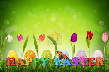 Photo pour Heureux concept de Pâques avec des tulipes et des œufs de Pâques - image libre de droit
