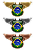 Gold silver and bronze award signs with wings and Brazil state flag Vector illustration