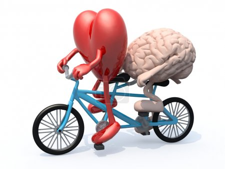 brain and heart riding tandem bicycle