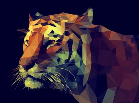 Illustration for Low poly design - Royalty Free Image