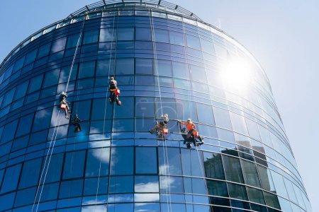Photo pour Quatre grimpeurs industriels nettoient les fenêtres à l'extérieur d'un centre d'affaires circulaire avec des fenêtres en miroir. Le ciel bleu se reflète dans les fenêtres du bâtiment. Photo de haute qualité - image libre de droit
