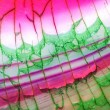Pink and Green Dragon Vein Agate Pattern...