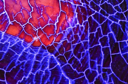 Blue and Red Dragon Vein Pattern...
