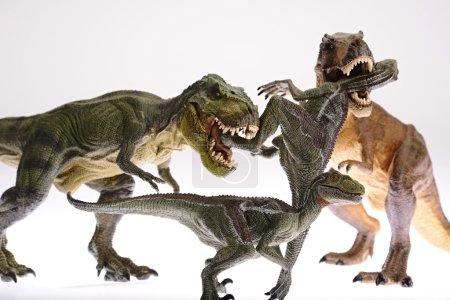 Foto de Están luchando contra dinosaurios aislados sobre fondo blanco - Imagen libre de derechos