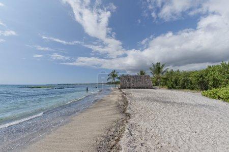 hawaiian hut on the beach