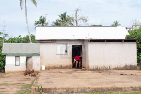 hovel, shanty, shack in Tonga, Polynesia