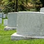 Arlington cemetery graveyard white tombstones...