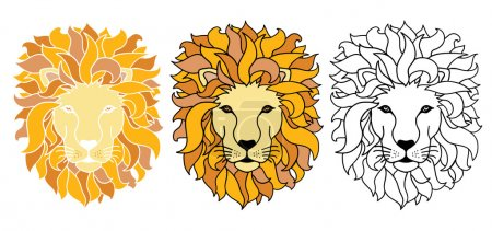 Vector Lions Illustration