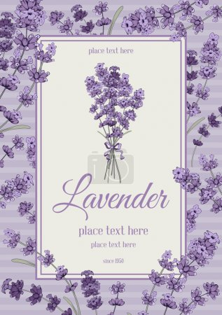Illustration for Vintage card with hand drawn floral elements in engraving style - fragrant lavender. Vector illustration. - Royalty Free Image