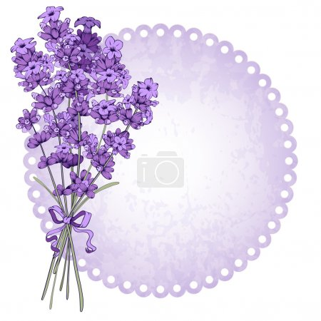 Illustration for Floral vintage background with fragrant lavender bouquet. Vector illustration isolated on white. - Royalty Free Image