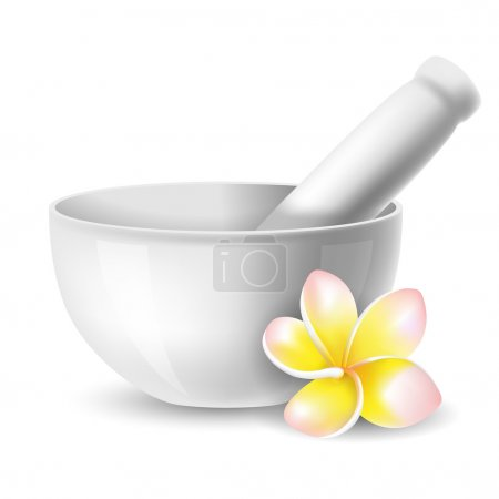 Illustration for White ceramic mortar and pestle with flowers plumeria. Vector illustration. Isolated on white background. - Royalty Free Image