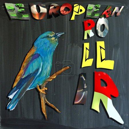 Foto de Una mano pintada ilustración (pájaro) y mixta (alfabeto y pizarra) Ilustración (pizarra ligeramente borrosa). Aves - Carraca - Imagen libre de derechos