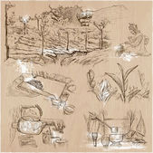 Tea Processing Agriculture An hand drawn vector illustration