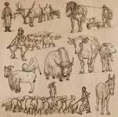 Farm animals Hand drawn vector pack