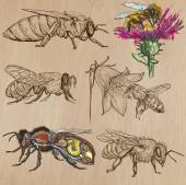 bees beekeeping and honey - hand drawn vector pack 2