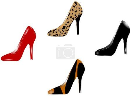Fancy womens shoes
