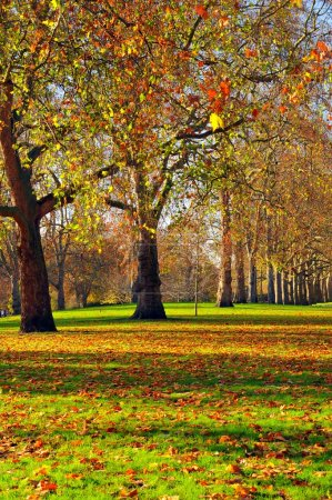 Photo for Travel to London - Royalty Free Image