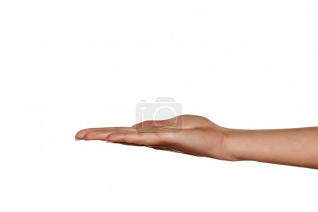 Photo for Beautiful female hand with the palm facing up - Royalty Free Image