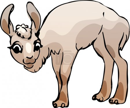 Illustration for Sketch of a lama as a vector illustration - Royalty Free Image