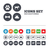 Pets icons Dog paw and feces signs Clean up after pets Pets food Web buttons set Circles and squares templates Vector
