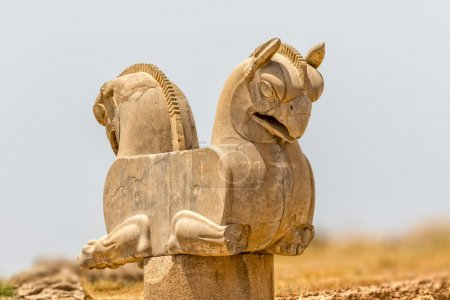 Homa Bird in Persepolis
