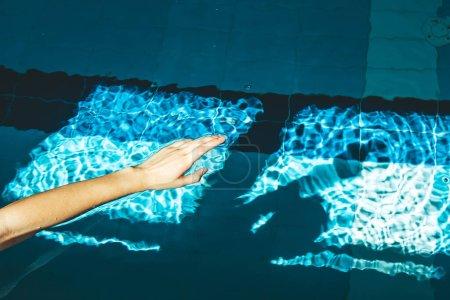 Photo pour La main du nageur plonge dans une piscine d'eau avec de l'eau claire transparente bleue, sur laquelle brille un soleil éclatant. terrain de sport intérieur pour la natation. - image libre de droit