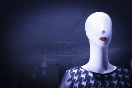 Shop dummy fashion mannequin